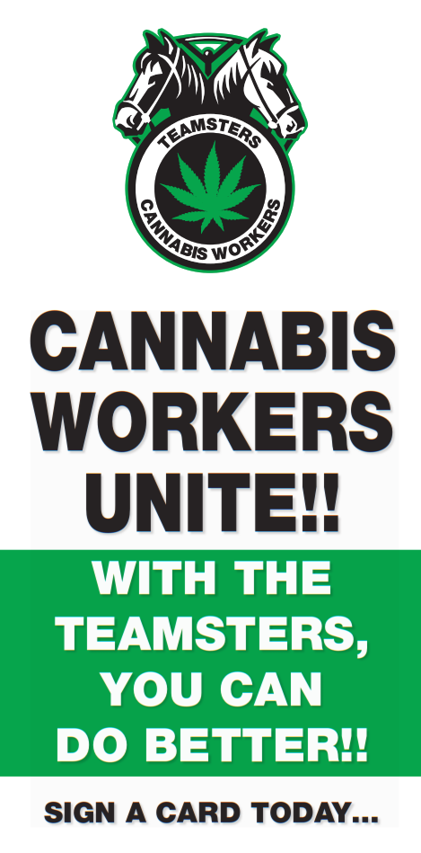 Cannabis Workers